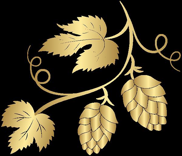 image free stock Hops clipart. Gold hop transparent png