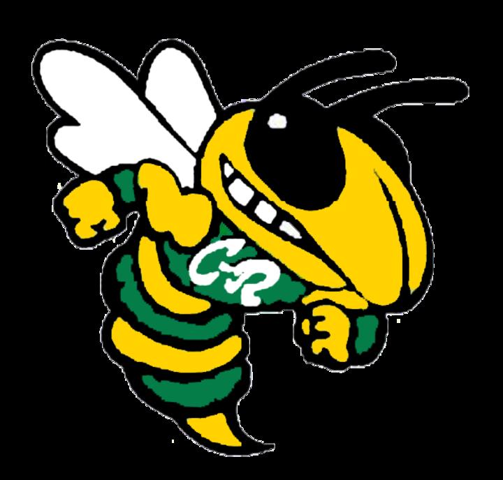 jpg free library The cory rawson hornets. Hornet clipart mascot