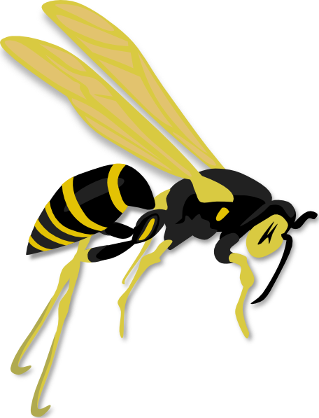 banner freeuse Wasp Sting Clipart