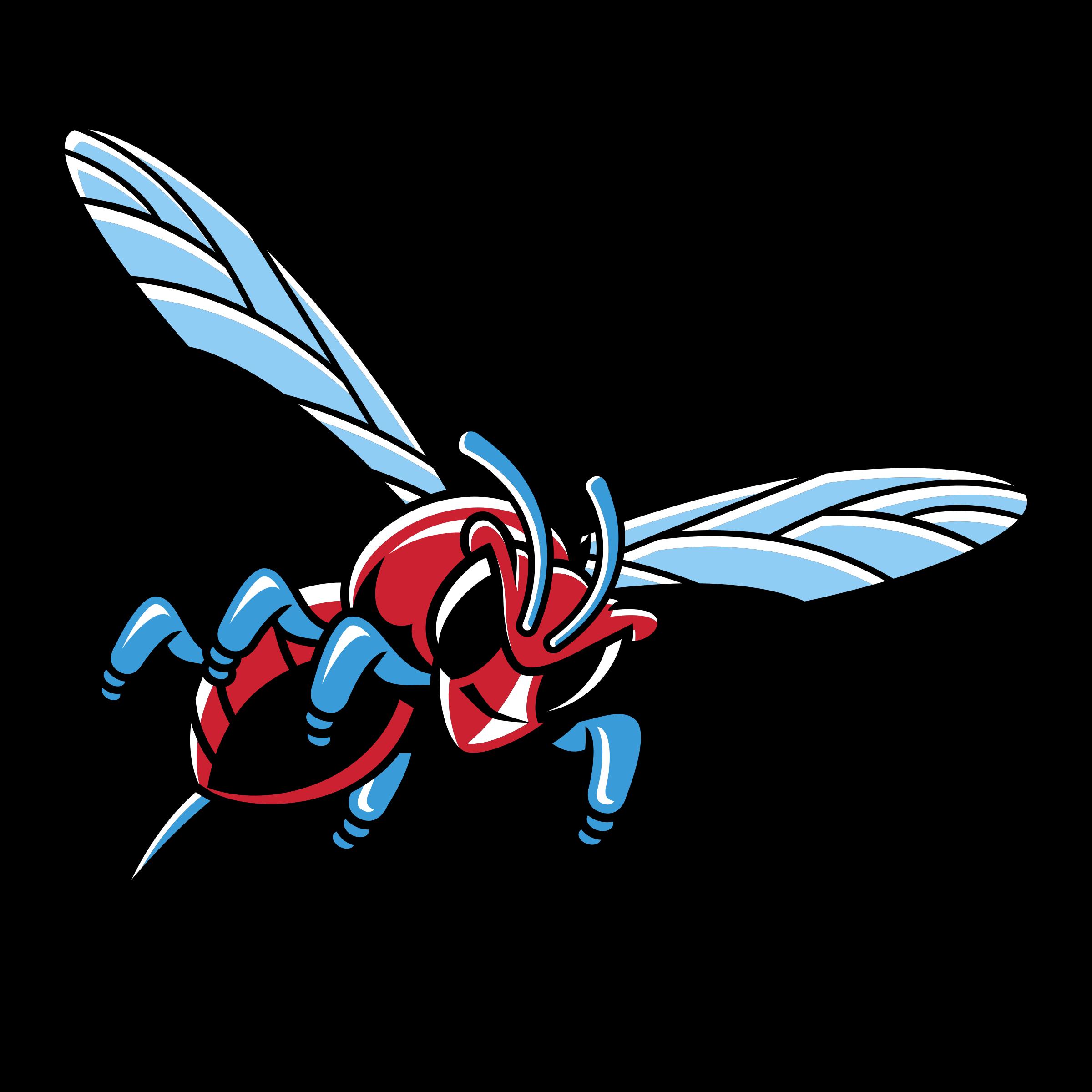 image transparent library Delaware state hornets logo. Hornet vector wing