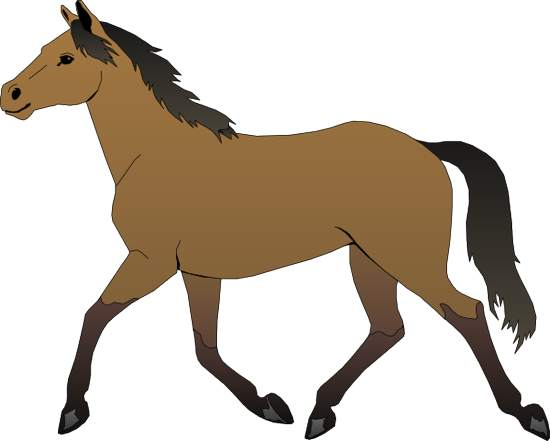 clip library stock Free download clip art. Horse clipart.