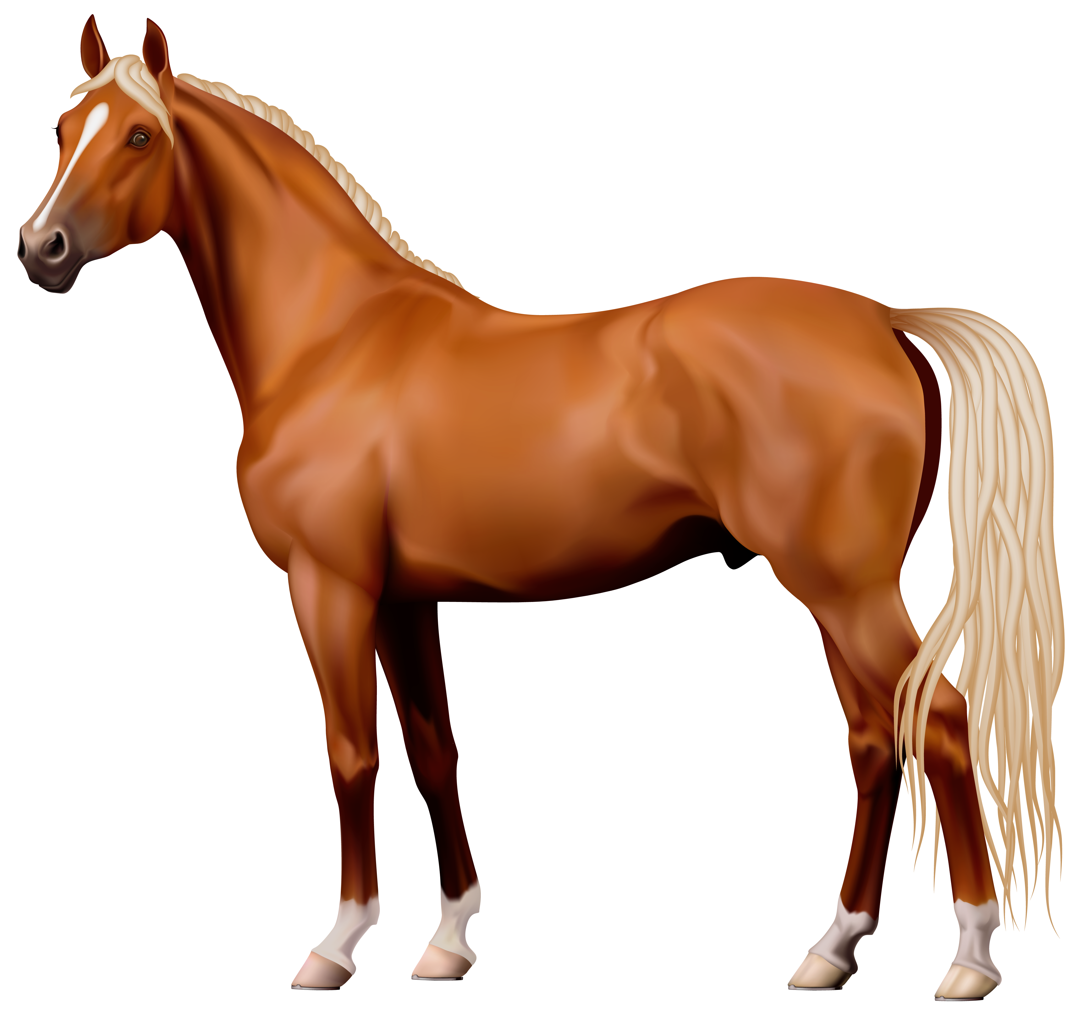 graphic library library Brown png best web. Realistic clipart horse