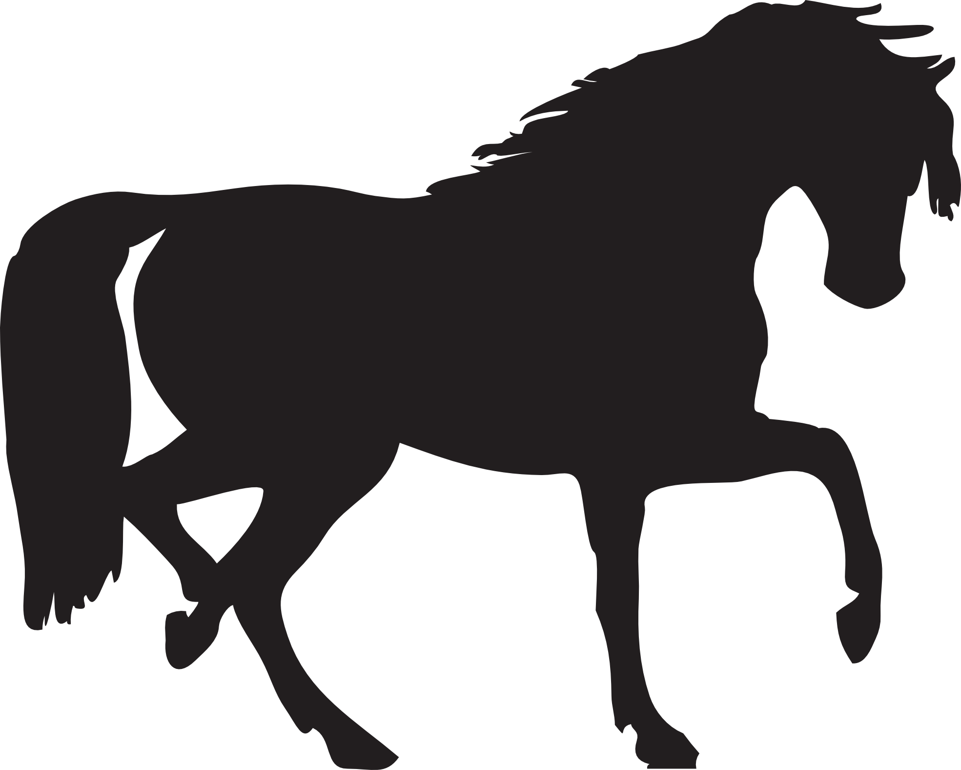 png horse clipart transparent #64874803