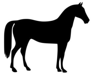 vector transparent Free horse and pony. Horses clipart