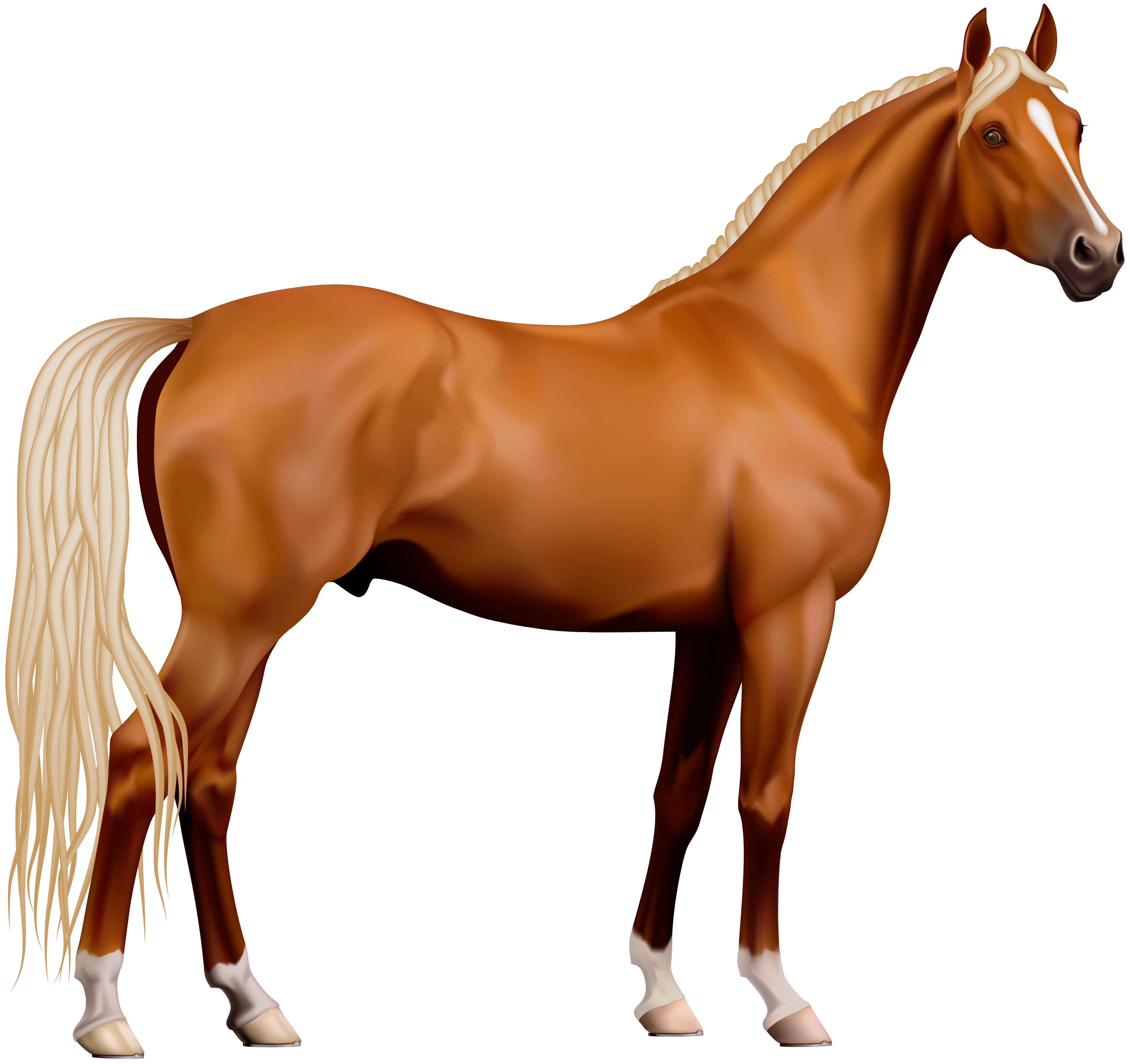 clipart black and white Transparent horse png gallery. Horses clipart