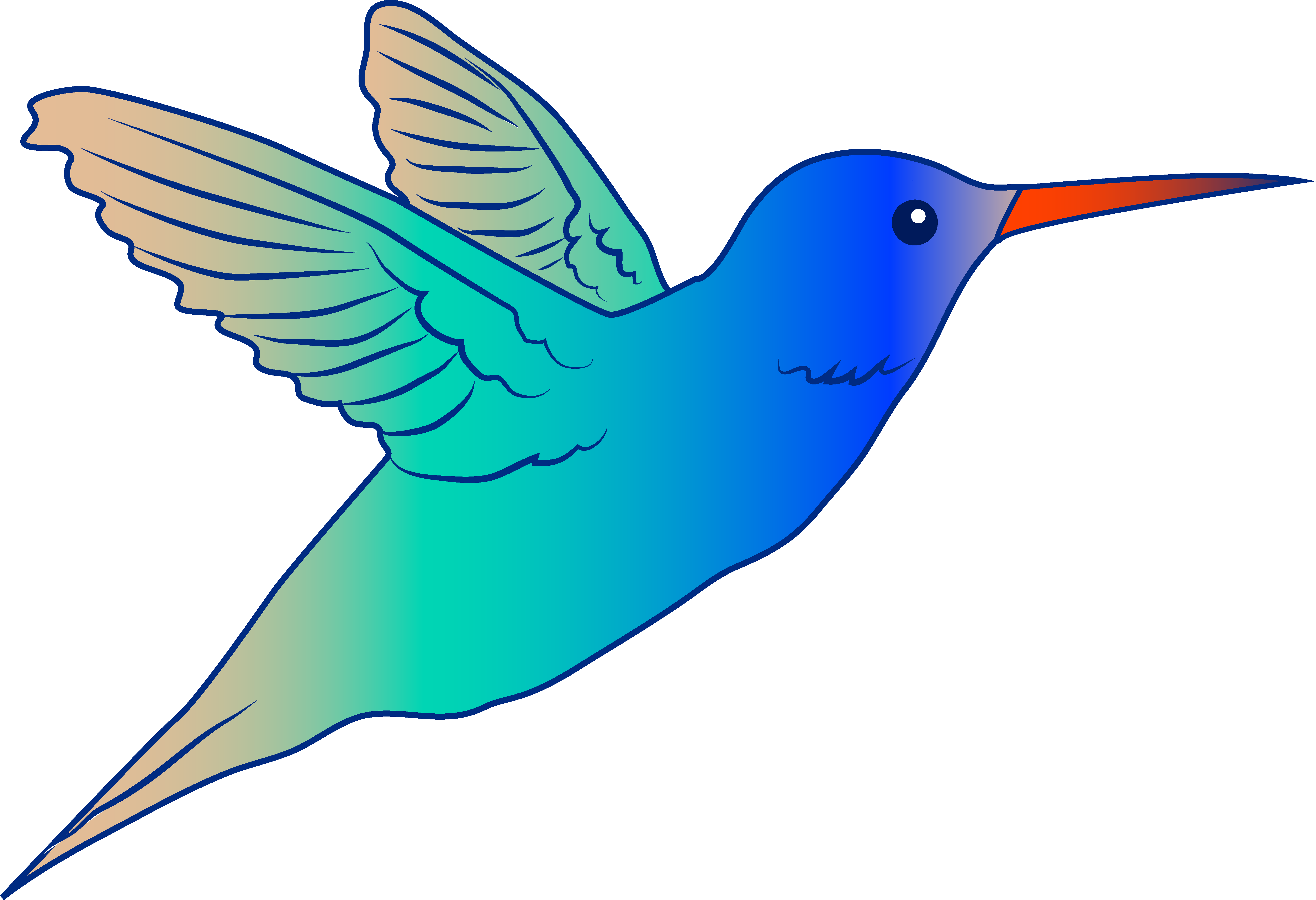 picture royalty free stock Hummingbird clipart. Free cliparts download clip