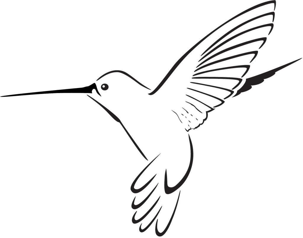 image royalty free Free cliparts download clip. Hummingbird clipart.