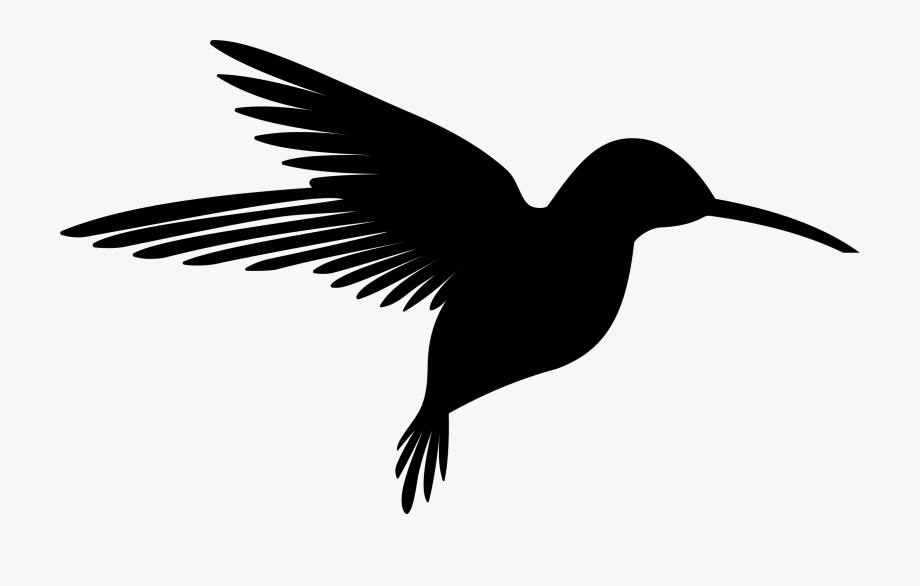 vector free download Hummingbird clipart. Image black and .