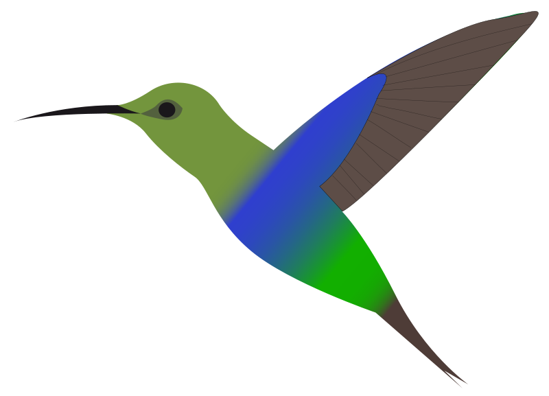 clip free library Free cliparts download clip. Hummingbird clipart
