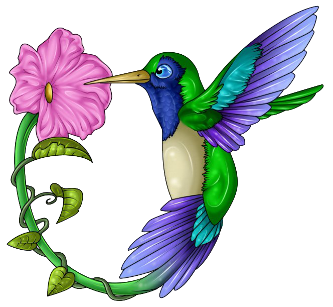 clip art black and white library Transparent background free on. Hummingbird clipart.
