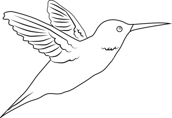 png royalty free library Hummingbird clipart. Free cliparts download clip.