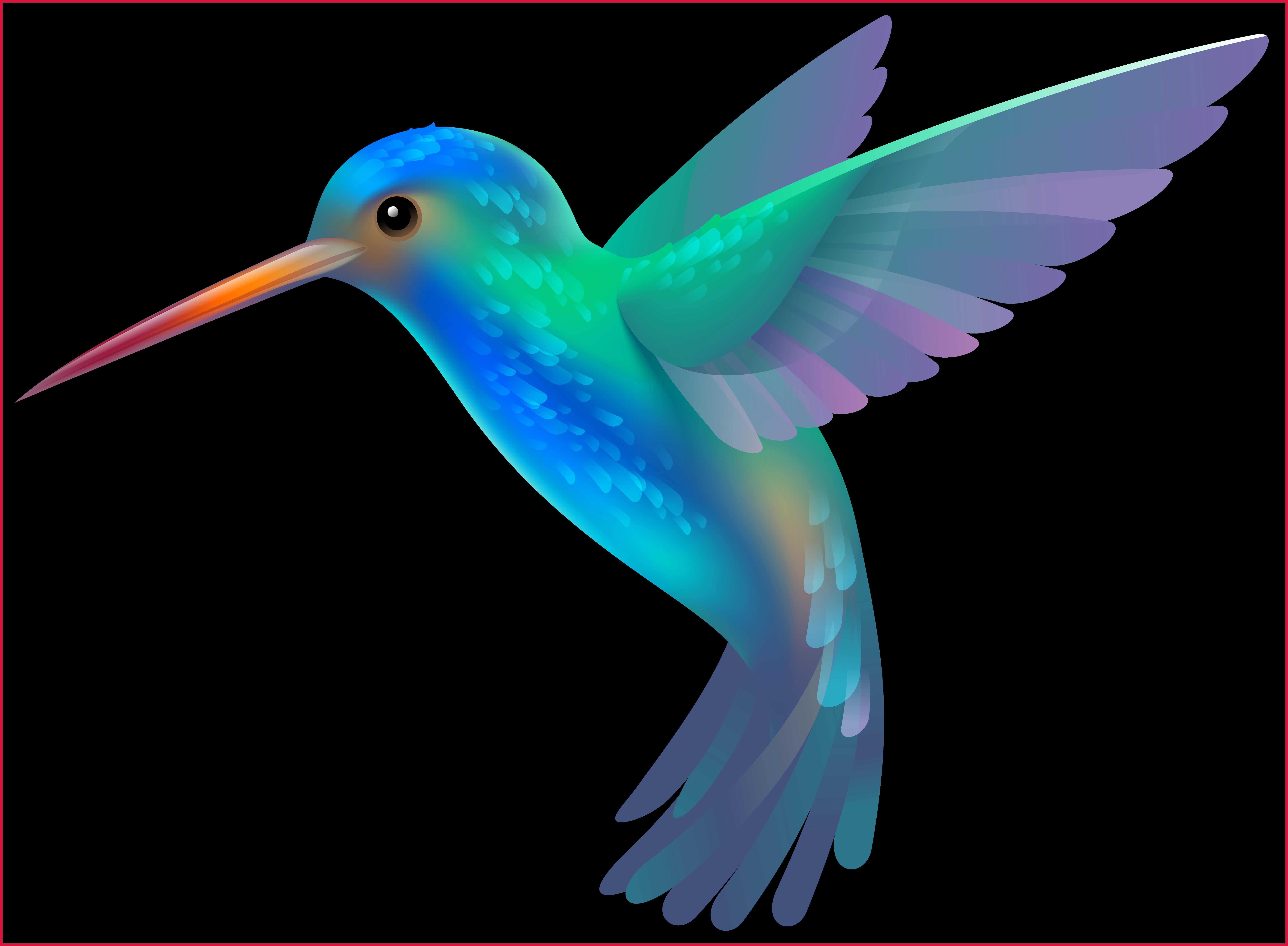 clipart library stock hummingbird clipart animated #79802193