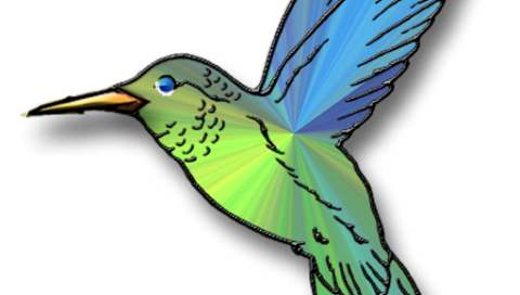 jpg black and white Hummingbird Cliparts