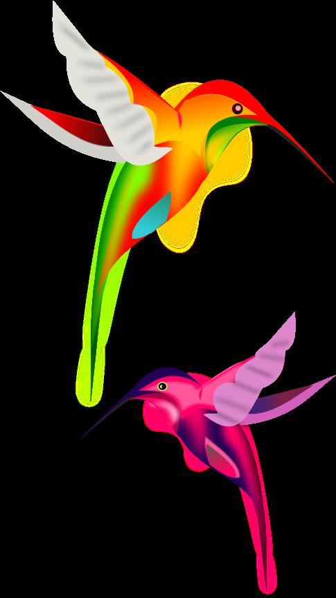 picture hummingbird clipart cute #79798872