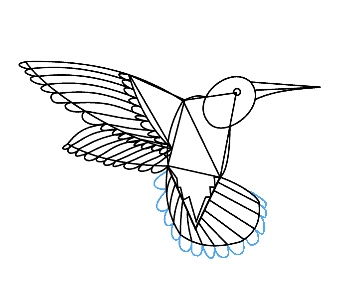 banner royalty free download Simple hummingbird at getdrawings. Niffler drawing coloring page