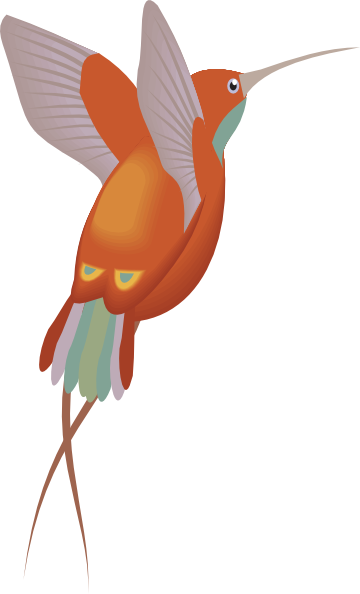 jpg Red And Orange Hummingbird Clip Art at Clker