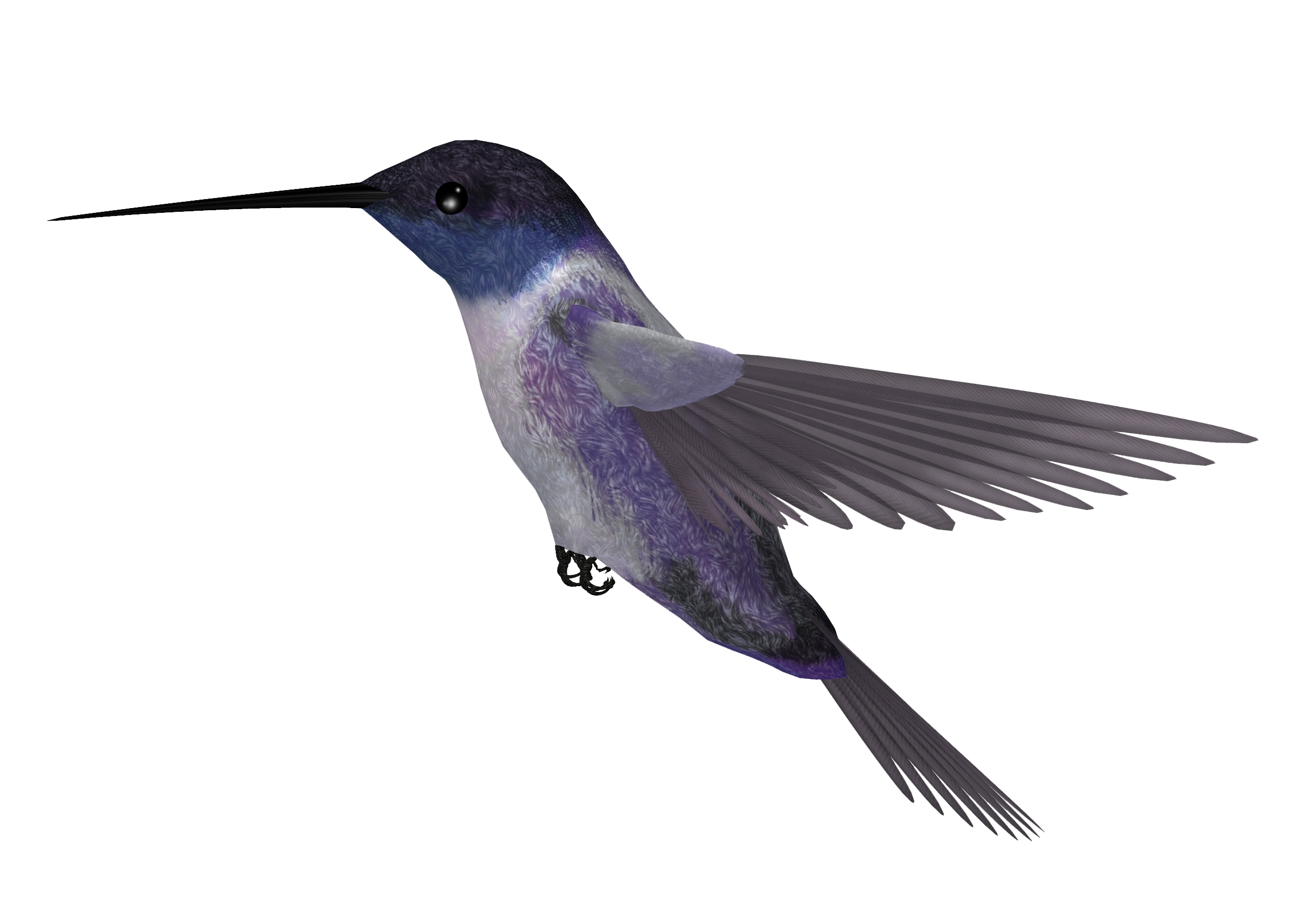 png royalty free download Hummingbird Tattoos Clipart Photo