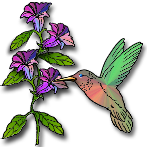 png free library Ruby Throated Hummingbird Clipart at GetDrawings
