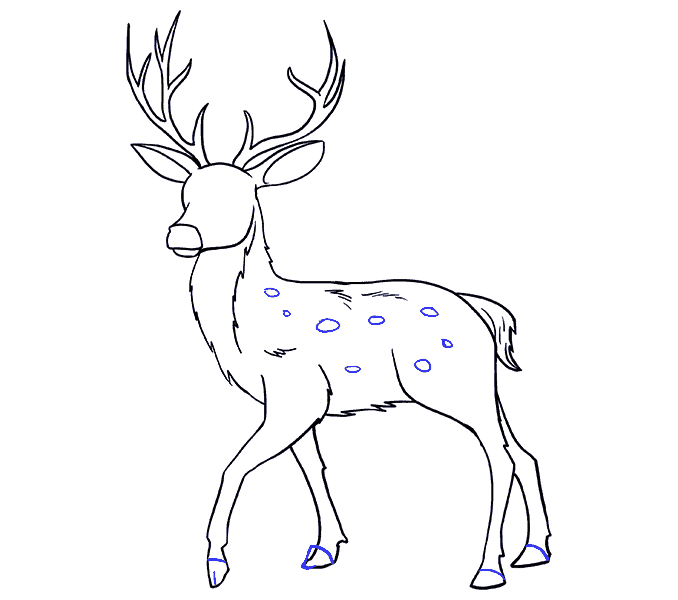 banner library library Collection of free Fawn drawing reindeer