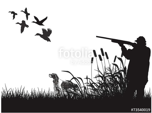 png transparent stock Duck stock image and. Hunting vector