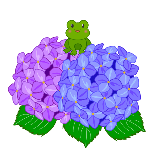 transparent stock Hydrangea clipart. Free frog and flower.