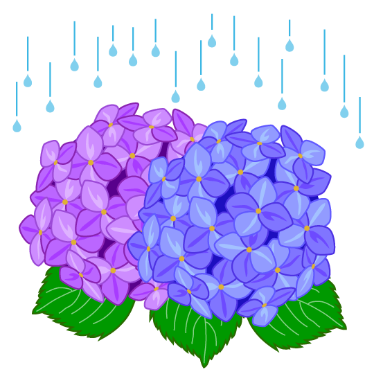 vector download Free of the rainy. Hydrangea clipart green hydrangea