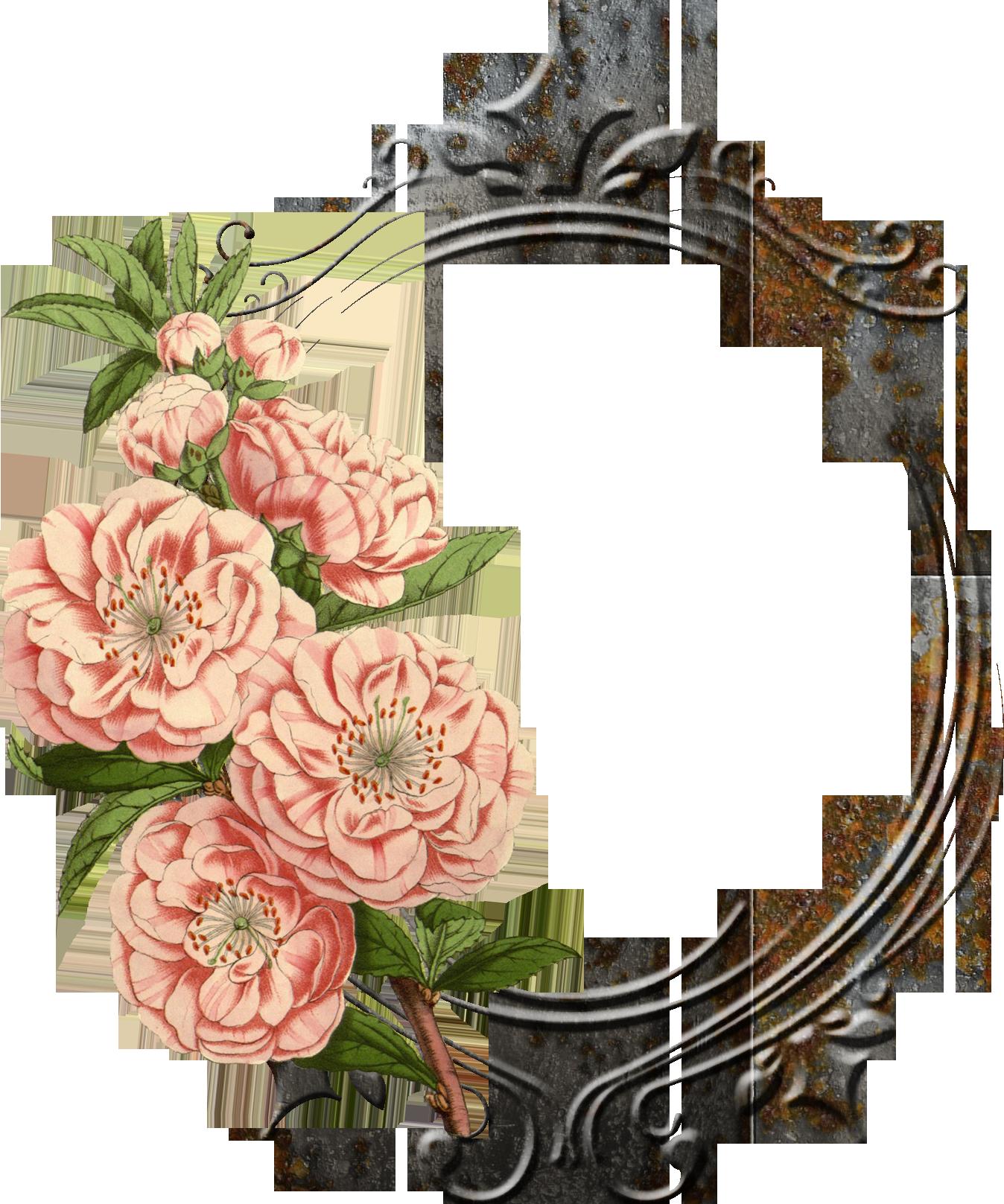 banner transparent stock Mango clipart flower. Vintage png google frames