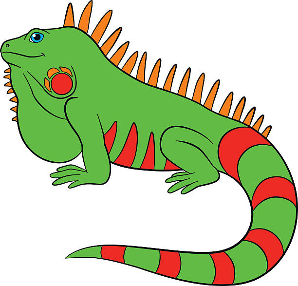 graphic royalty free library Station . Iguana clipart