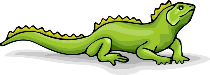 picture free stock Free cliparts download clip. Iguana clipart