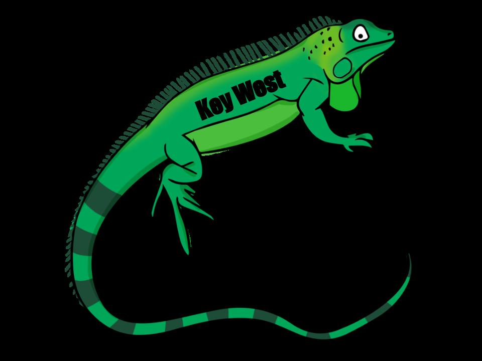 vector free download Iguana clipart. Green garden free on