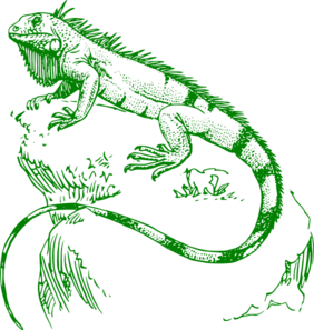 graphic free stock Clip art at clker. Iguana clipart