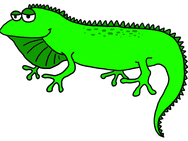 picture library stock Iguana clipart. Green free on dumielauxepices