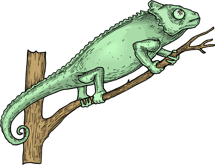 svg library stock Lizard clipart lizzard. Free in a tree.