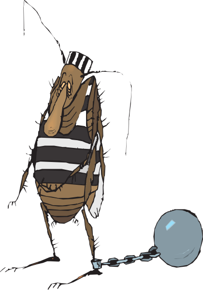 image transparent stock Bug Prisoner Clip Art at Clker