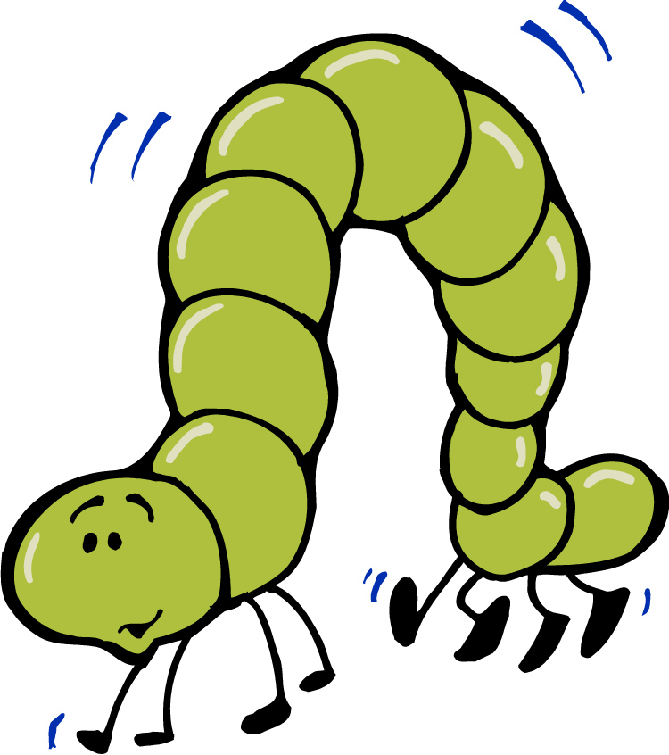 clipart library Inchworm clipart. Free inch worm cliparts.