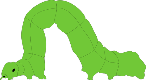 picture transparent stock Inchworm Clipart gusano
