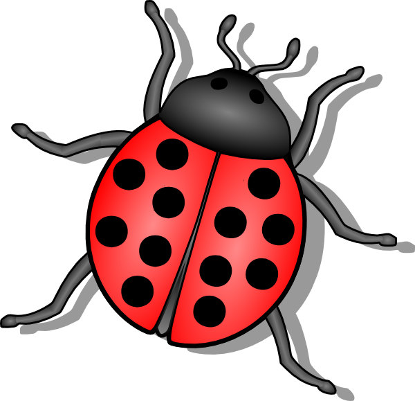 transparent library Kid clipartix. Insect clipart
