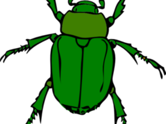 image library Insect clipart. Free on dumielauxepices net.