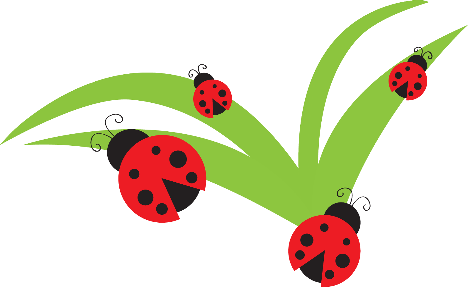 clip art download Insect on flower clipground. Ladybugs clipart vector.