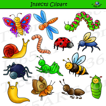 image freeuse library Clipart bugs. Insects bug graphics png