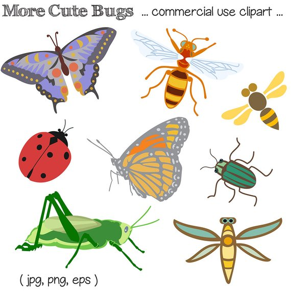 vector black and white Bug clip art insect. Insects clipart