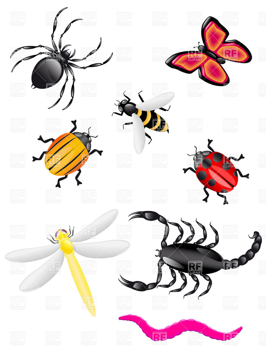 black and white library Bugs and kid clip. Insects clipart