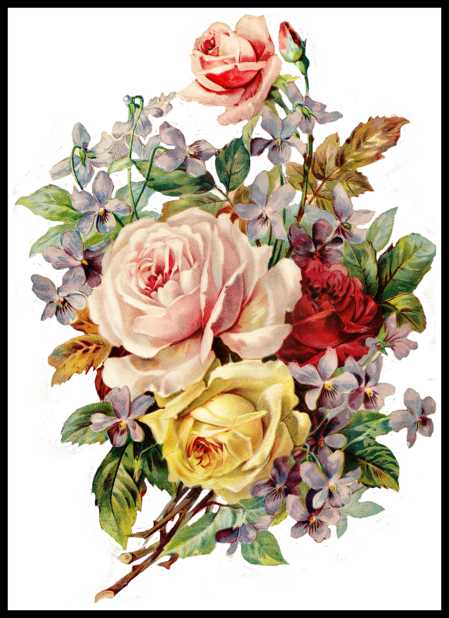 png library Incredible Http Fotki Yandex Ru Get Of Flowers In Colour Inspiration