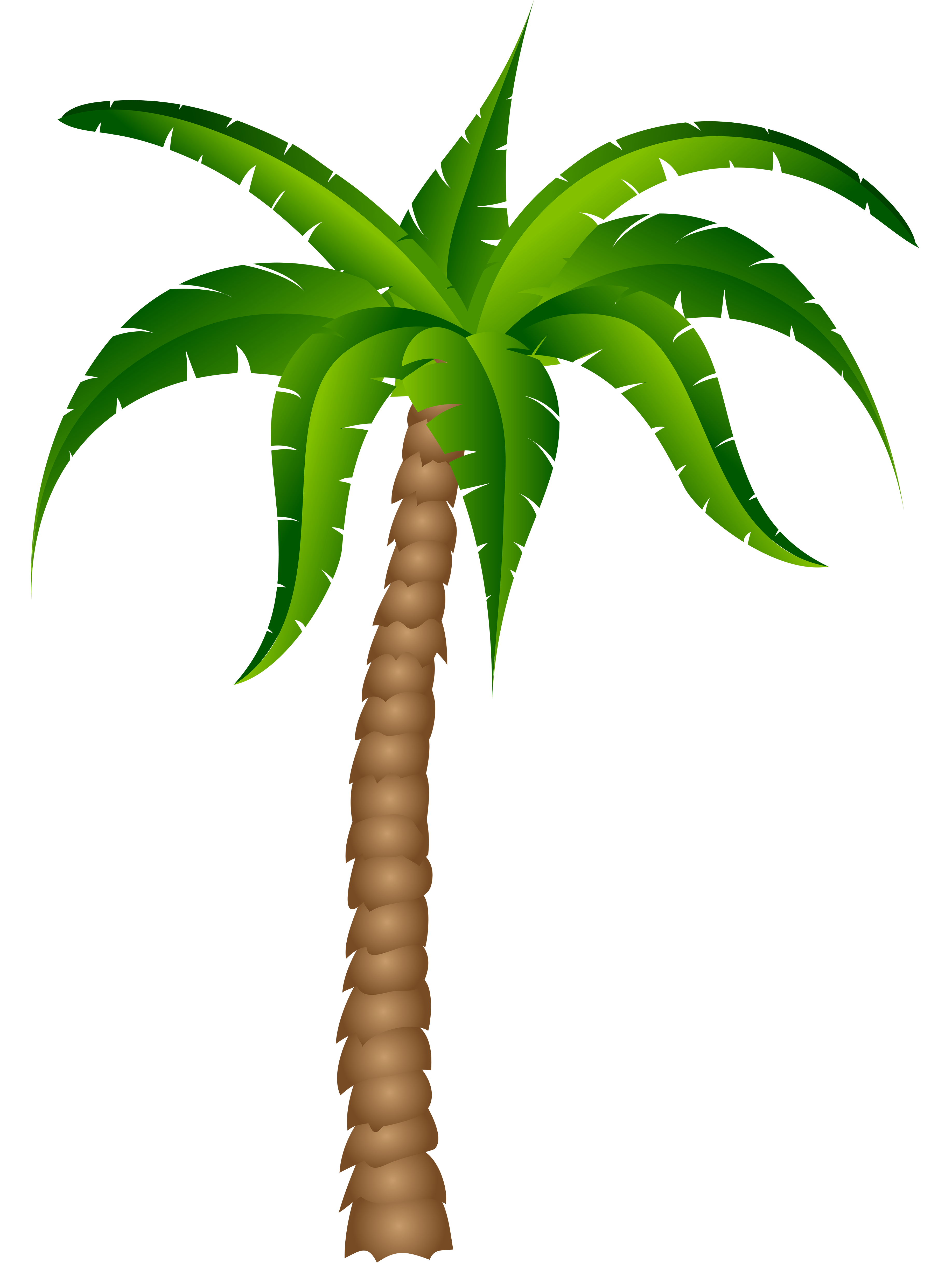 vector freeuse stock Palm Tree Drawing Png at GetDrawings