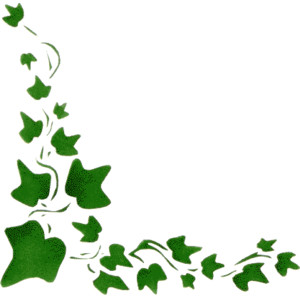 banner transparent download Ivy clipart. Free cliparts download clip.