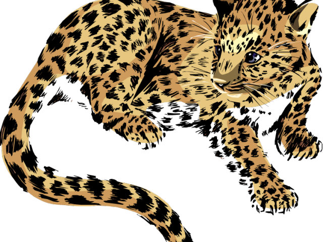 freeuse stock Free on dumielauxepices net. Jaguar clipart
