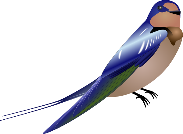 png free download Jay clipart bulbul. Bird clip art at.