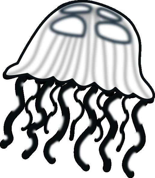 black and white stock Clip art vector panda. Jellyfish clipart cnidarians.