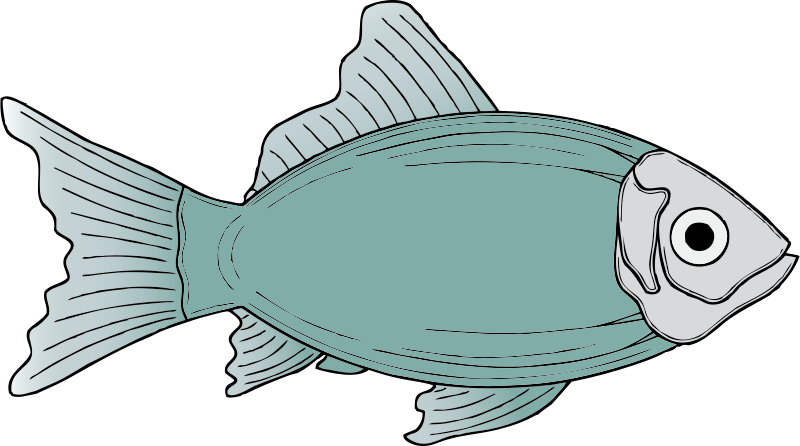 clip library download Collection of free Fished clipart tilapia fish
