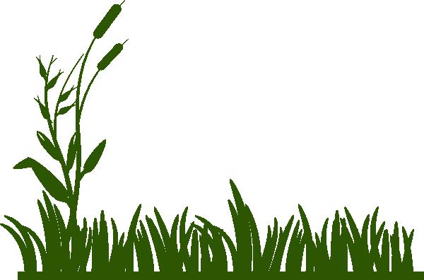 clip free stock Jungle . A clipart grass